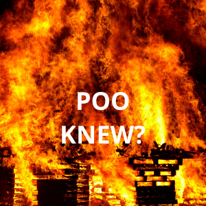 Poo can cause large-scale fires
