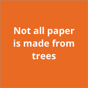 Not all paper is made from trees