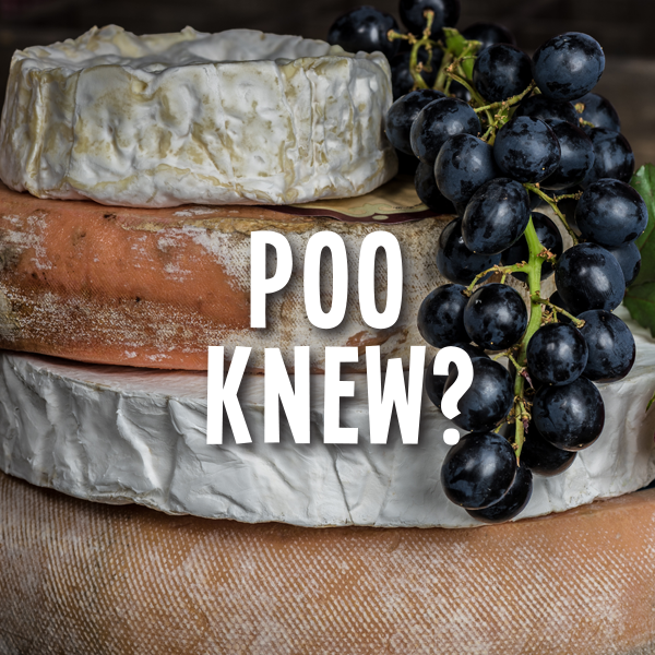 Things to do in Richmond Tasmania | Pooseum Poo Cheese